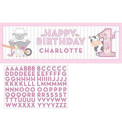 Amazon.com: Farmhouse 1er cumpleaños niña grande banner, 1 ...