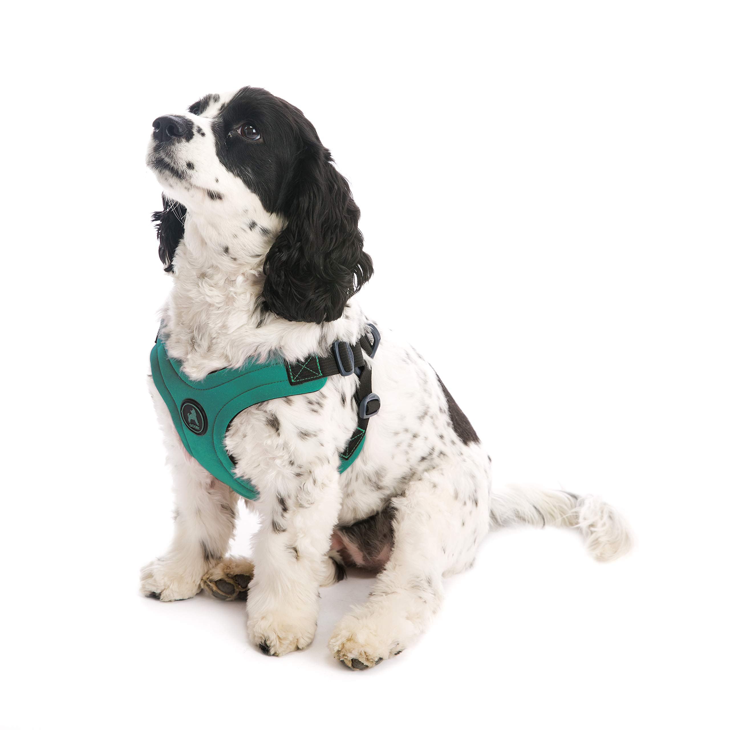 Gooby - Escape Free Sport Harness, Small Dog Step-in Neoprene Harness for Dogs That Like to Escape Their Harness, Turquoise, Large