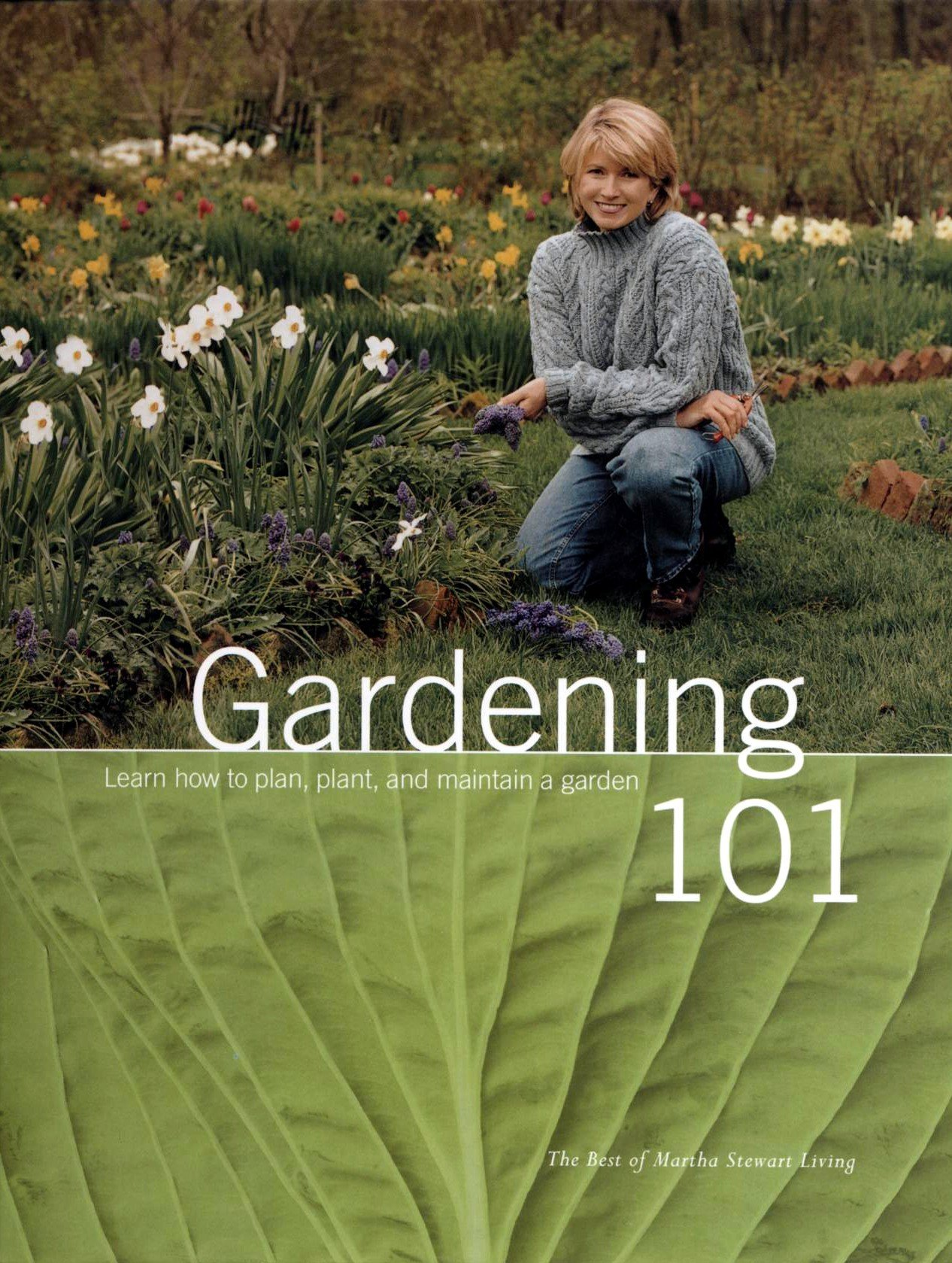how to plan a garden. Gardening 101: Learn How To Plan, Plant, And Maintain A Garden (The Best Of Martha Stewart Living): Stewart, Margaret Roach, Douglas Brenner: Plan
