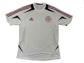 Adidas - Camiseta de fútbol, diseño de Dinamarca: Amazon.es: Deportes y aire libre