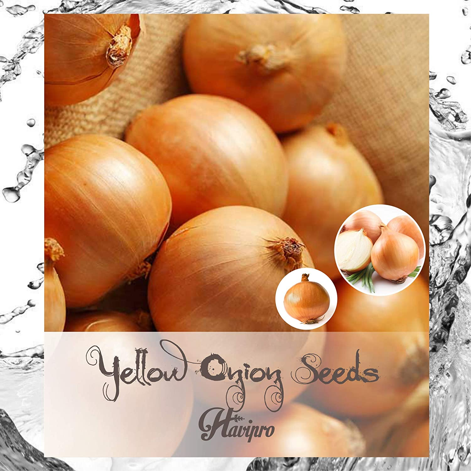by HAVIPRO Organic Sweet Yellow Onion Seeds for Planting 100 Short Day Onion Seeds Non GMO High Germination Rate Delicious
