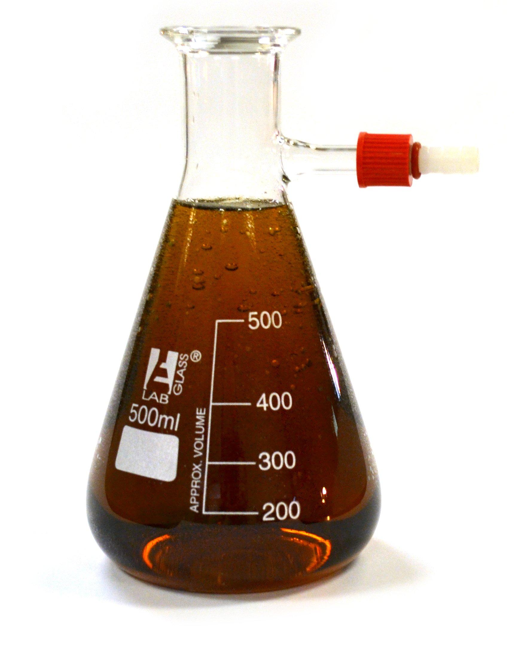 Economy Glass Filter Flask, Borosilicate, 500mL, Pack of 2