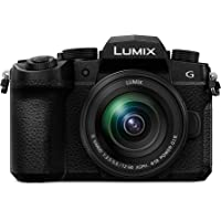 LUMIX G95 4K Dust/Splash Resistant Camera DC-G95GN-K + H-FS12060E Lens 12-60mm F3.5-5.6