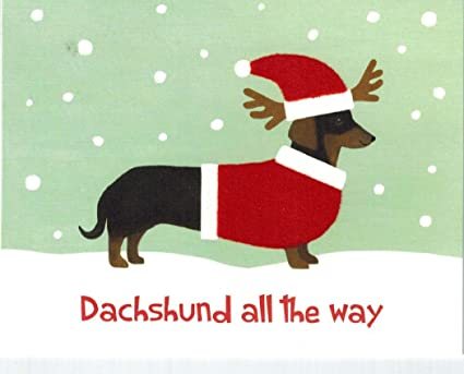 dachshund holiday cards dachshund all the way - Pet Holiday Cards