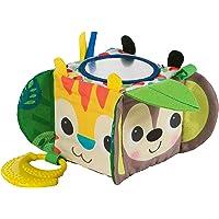 Bright Starts Hide and Peek Multi-Activity Block Toy