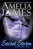 Secret Storm (College Romance Book 2)
