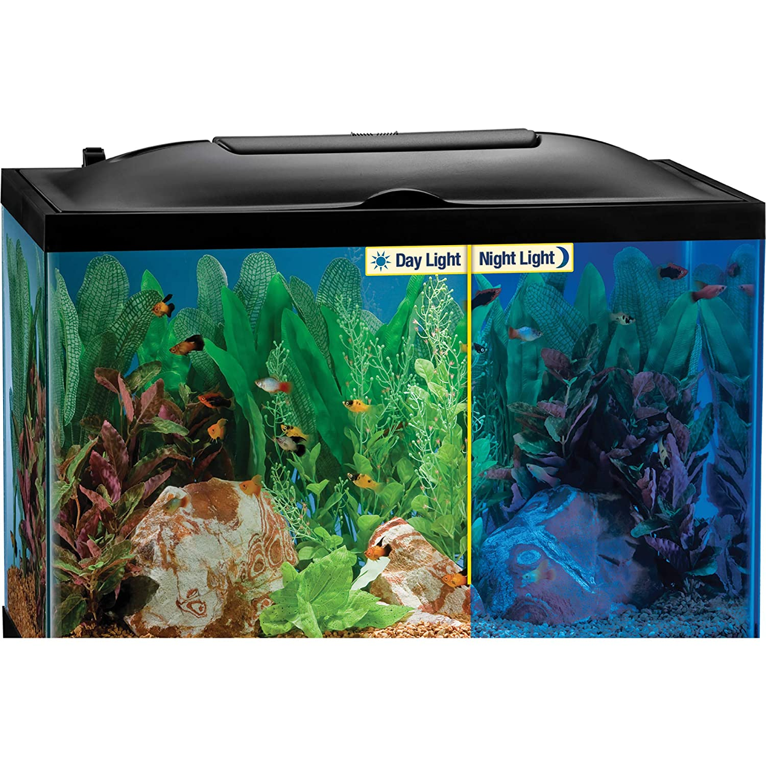 Top 10 Best Aquarium Hoods