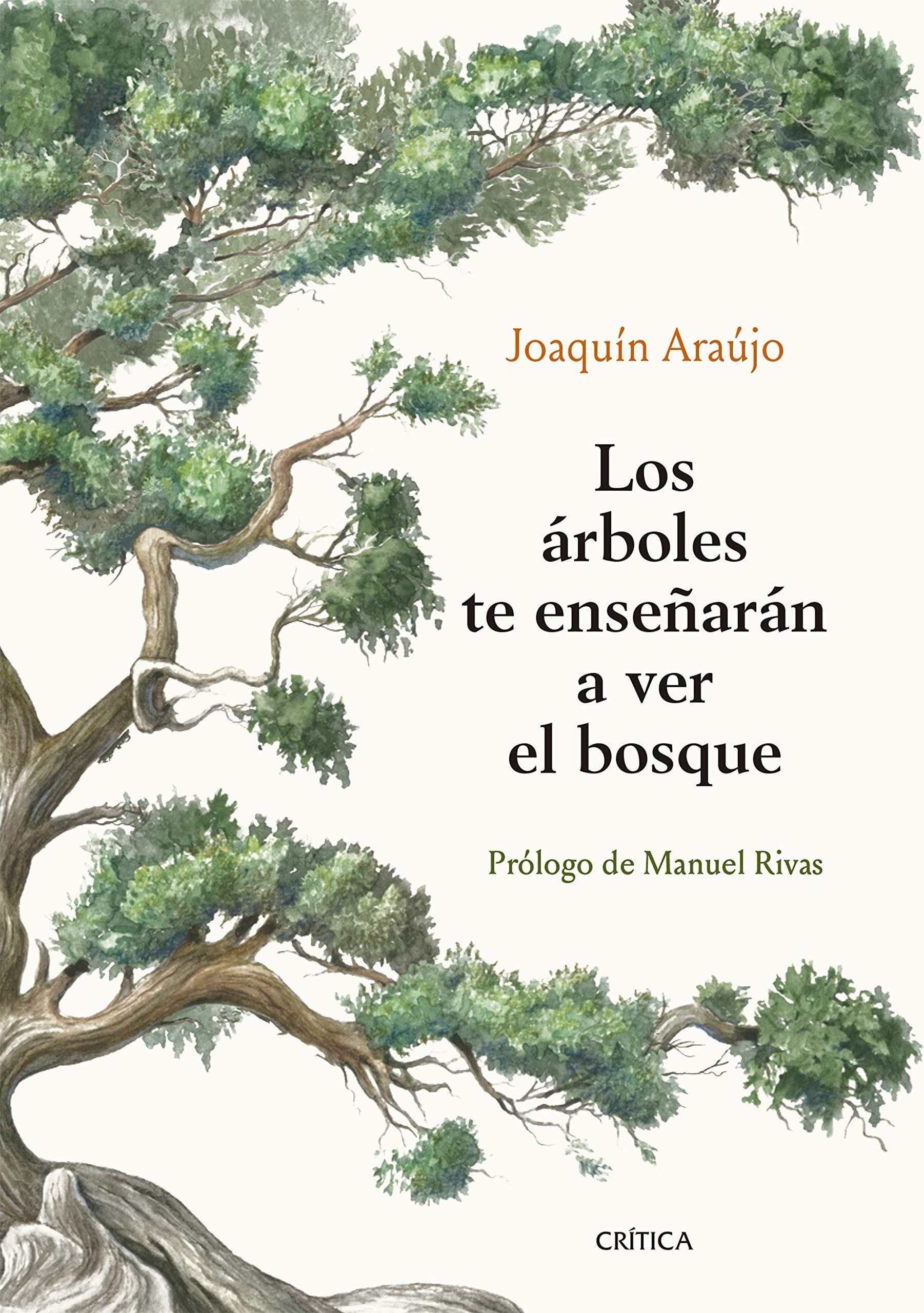 Los árboles te enseñarán a ver el bosque: Prólogo de Manuel Rivas Ares y Mares: Amazon.es: Araújo, Joaquín: Libros