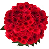 GlobalRose Red Roses - Order 100 Red Roses