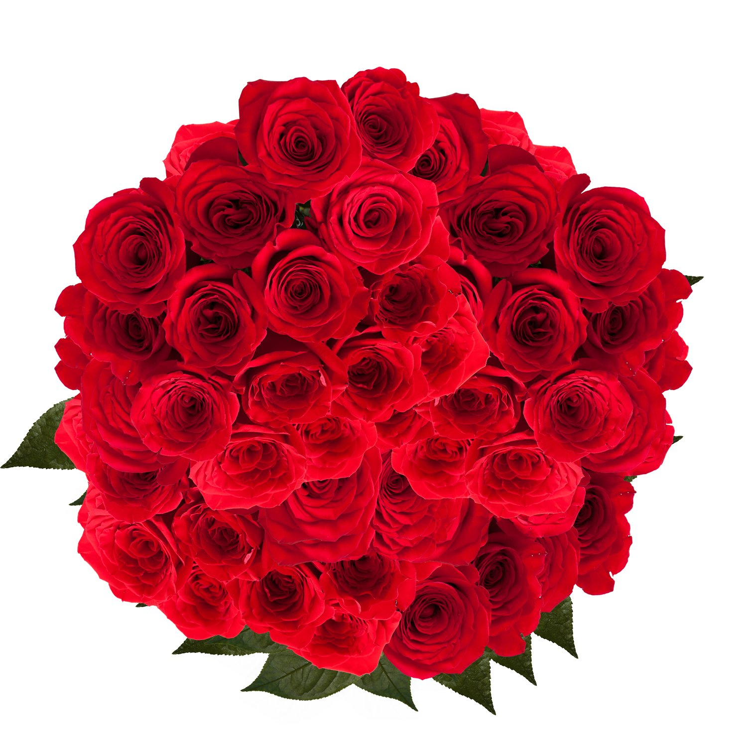 GlobalRose 100 Red Roses- Beautiful Fresh Flowers- Lovely Bright Blooms