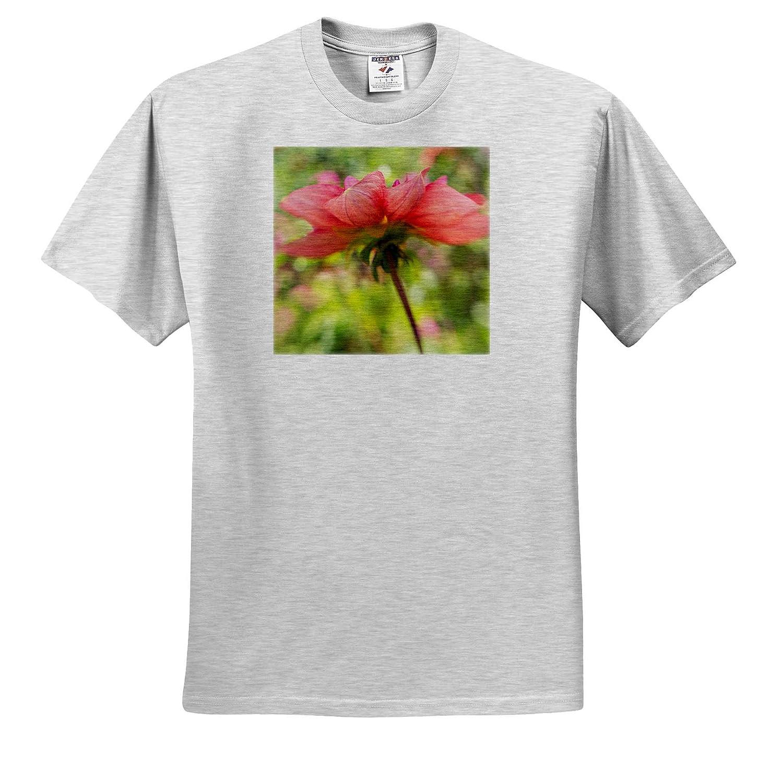 Amazon 3drose Danita Delimont Flowers Usa Oregon Portland