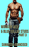 Blue Collar Studs & Working Men, Part 3: Plowed By The Plumber's Pipe
