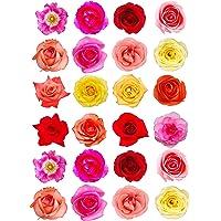 24 rosas de colores mixtos para decoración de tartas de papel de oblea comestible