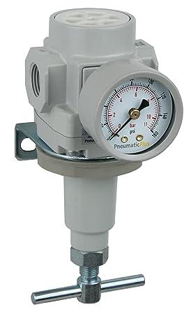 PneumaticPlus SAR400-N06BG Compressed Air Pressure Regulator