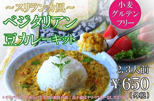ベジタリアン対応・グルテンフリー 豆カレーキット 2〜3人前 【小麦フリー】