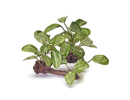 Pistachio Pet – Hermosa planta realista de acuario de 10 cm en tronco