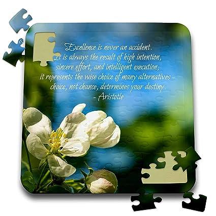 Amazon.com: 3dRose Alexis Design - Quotes Inspirational ...