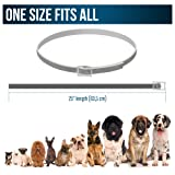 Flea Collar for Dogs - MADE IN GERMANY - Flea and
