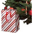 Santas Secret Gift - Automatic Christmas Tree Watering System (Candy Cane) World's TOP Selling Waterer Since 1998. | Made in