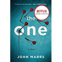 The One: A Novel book cover