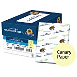 Hammermill Colored Paper, Canary Printer