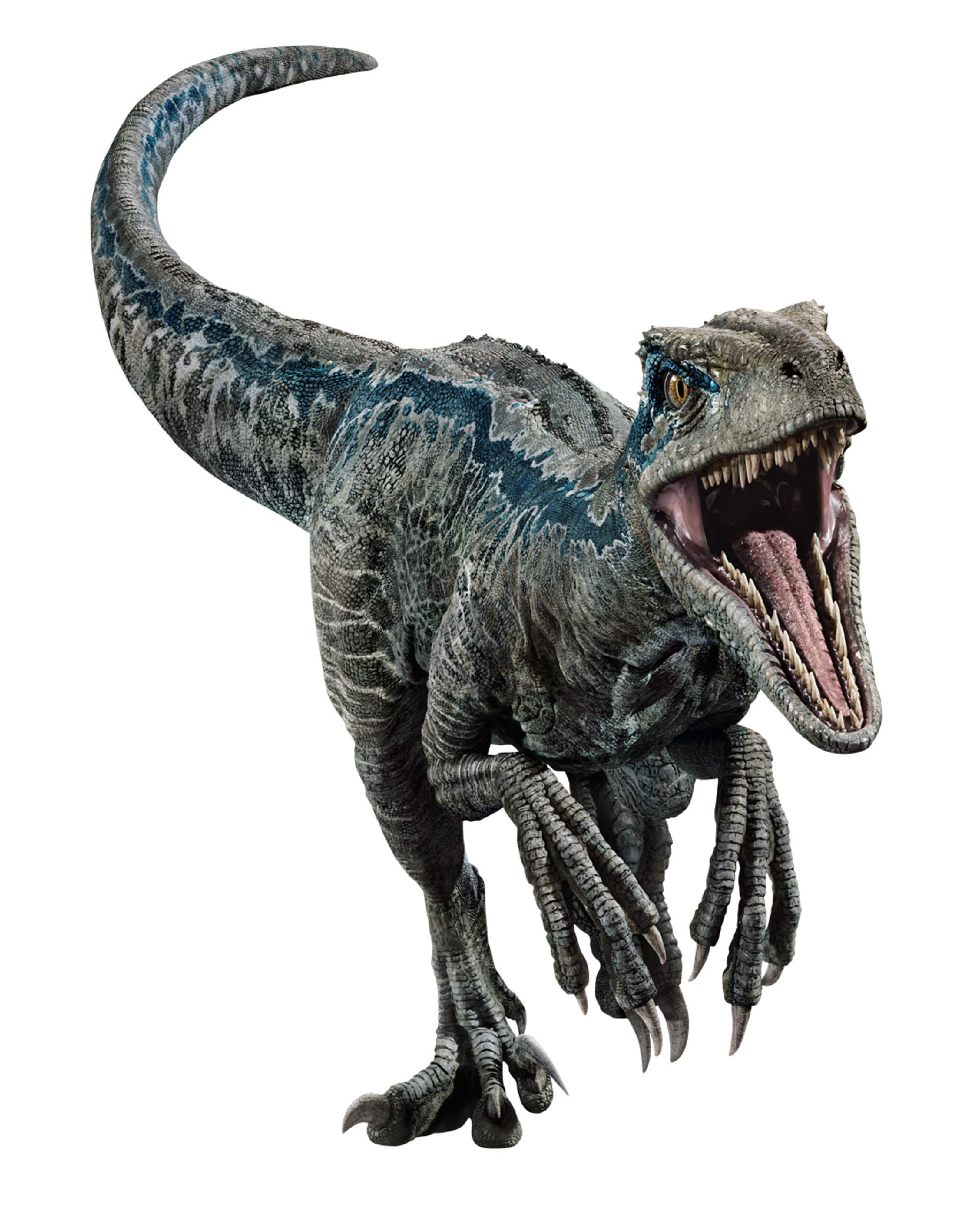 FATHEAD Velociraptor Blue - Jurassic World: Fallen Kingdom - Giant Officially Licensed Removable Wall Decal Multicolor by FATHEAD (Image #3)