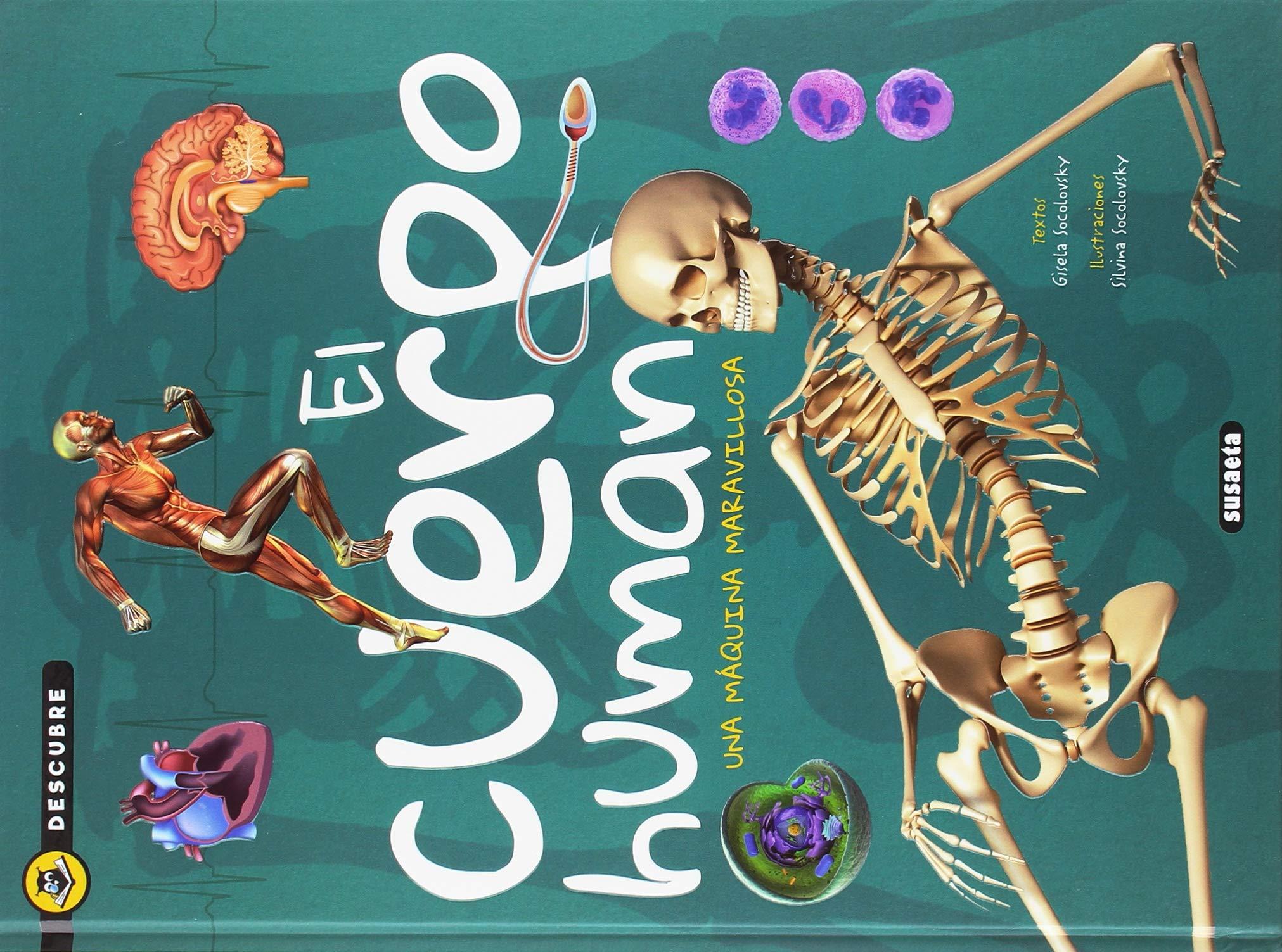 El cuerpo humano (Descubre)