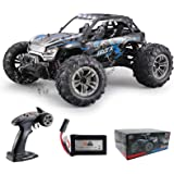 Fistone RC Truck 1/16 High Speed Racing Car , 24MPH 4WD Off-Road Waterproof Vehicle 2.4Ghz Radio Remote Control Monster Truck