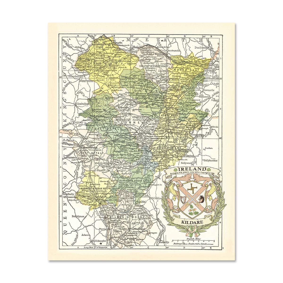 Amazon Com Historic Families Kildare County Map Of Ireland Antique