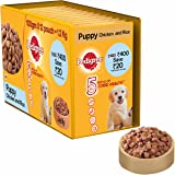 Pedigree Gravy Puppy Dog Food Pouch, Chicken and Rice, 100 g (Pack of 12)