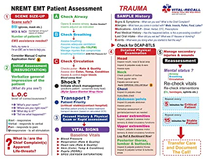 Vital-Recall EMT Assessment Trauma and Medical Training Sheets - - 50 pack