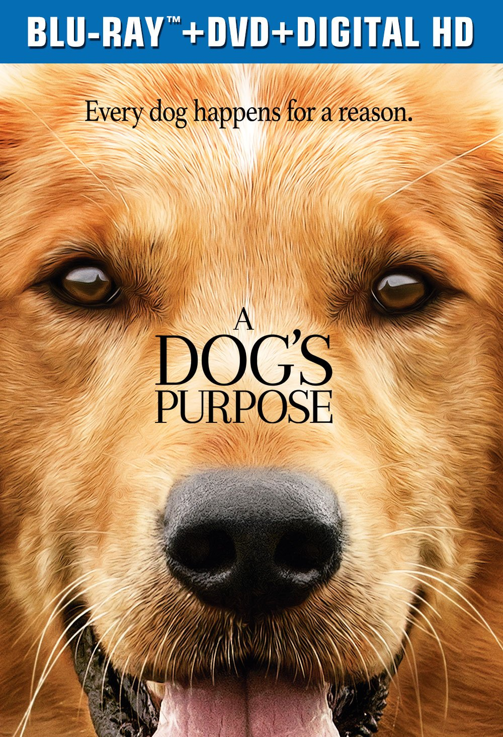 Is A Dog S Purpose On Netflix