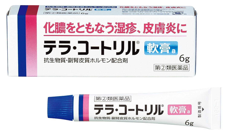 【武田コンシューマーヘルスケア】<指定第2類医薬品>テラ・コートリル軟膏のサムネイル