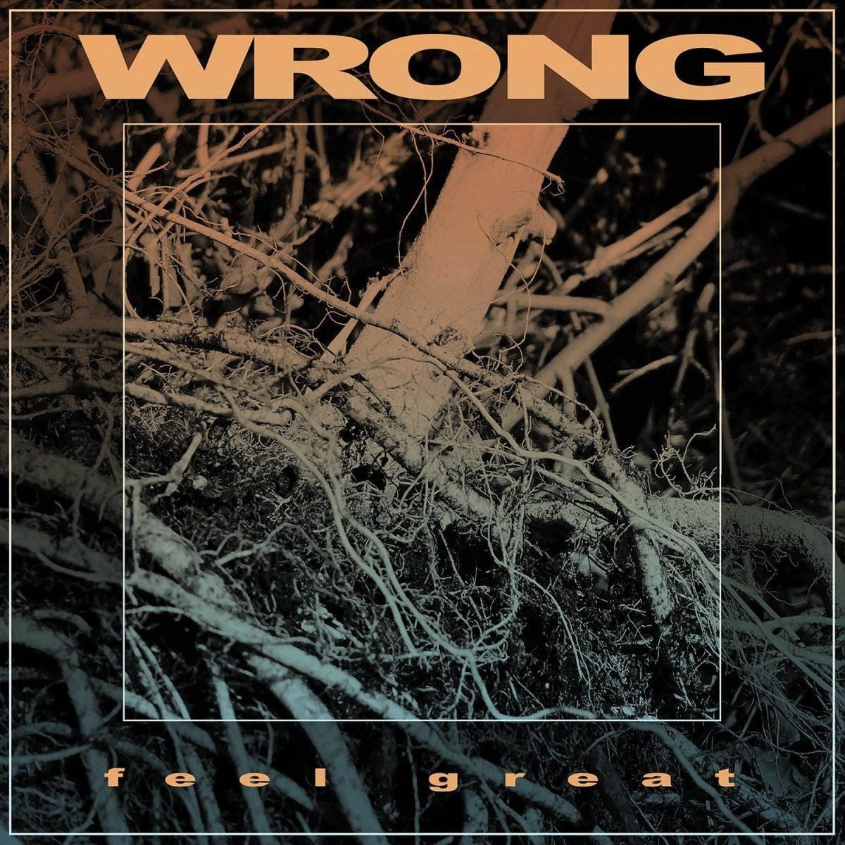Vinilo : Wrong - Feel Great (LP Vinyl)
