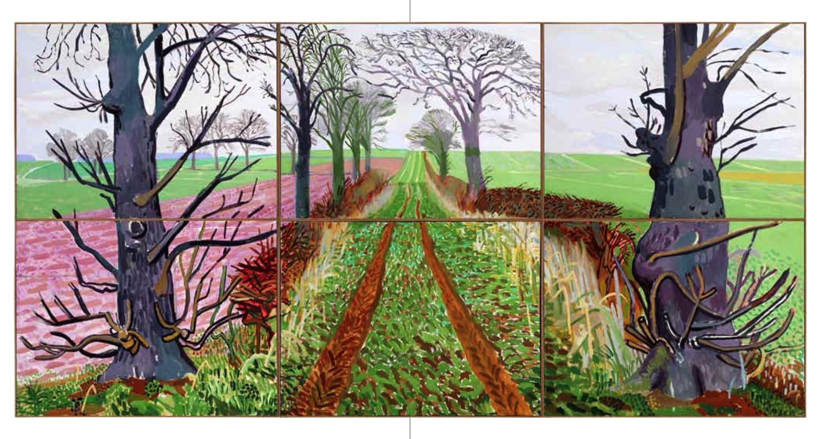Connu David Hockney: A Bigger Picture: Amazon.co.uk: Tim Barringer  NN86