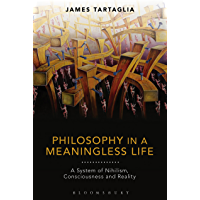 Philosophy in a Meaningless Life: A System of Nihilism, Consciousness and Reality