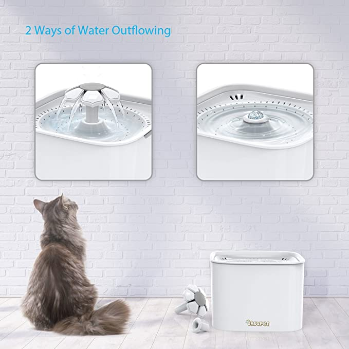 Amazon.com: DADYPET Fuente de agua para gatos, dispensador ...
