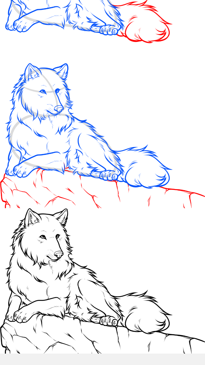 How To Draw A Wolf Step By Step 0:00