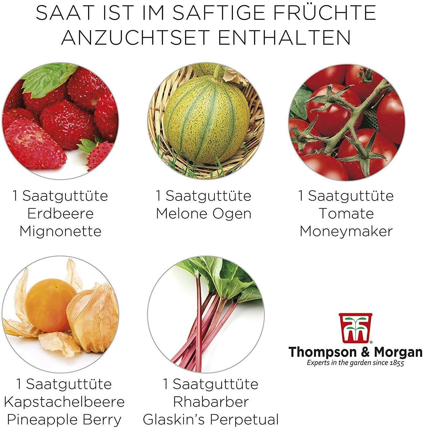 Jugoso Fruta Semilla Cultivo Equipo Caja de Regalo - 5 Fresh ...
