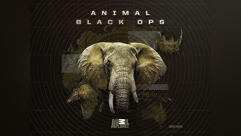 Animal Black Ops - Season 1