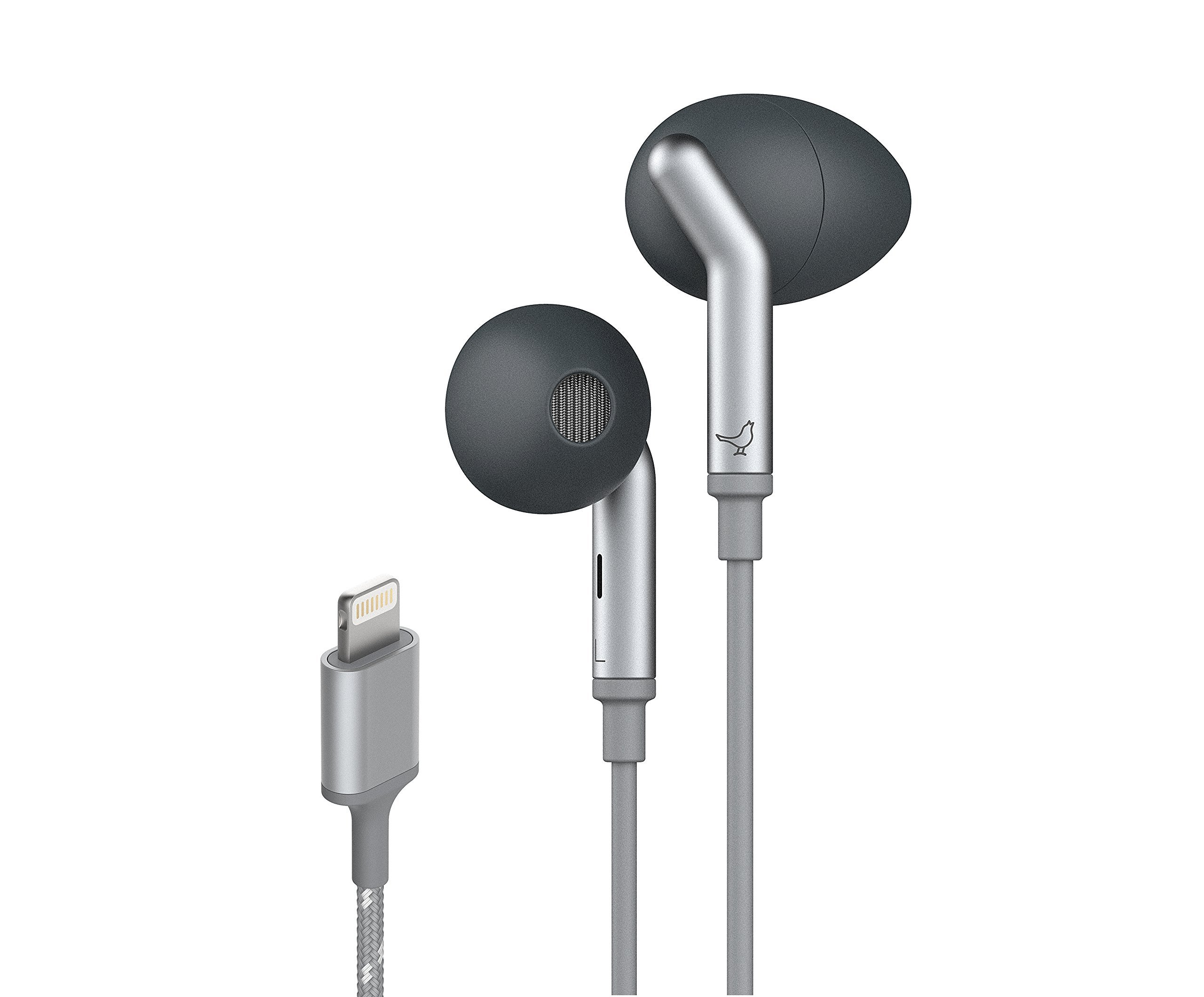 Libratone Q ADAPT Lightning In-Ear Noise Cancelling Headphones – for Apple Devices (Stormy Black) by Libratone