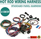 81GWMDZc95L._AC_UL160_SR160160_ amazon com street rod universal 14 fuse 12 14 circuit wire street rod universal 14 fuse 12-14 circuit wire harness at bayanpartner.co