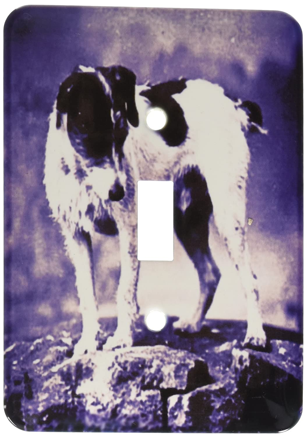 3dRose lsp/_50697/_1 Jack Russell Terrier Single Toggle Switch