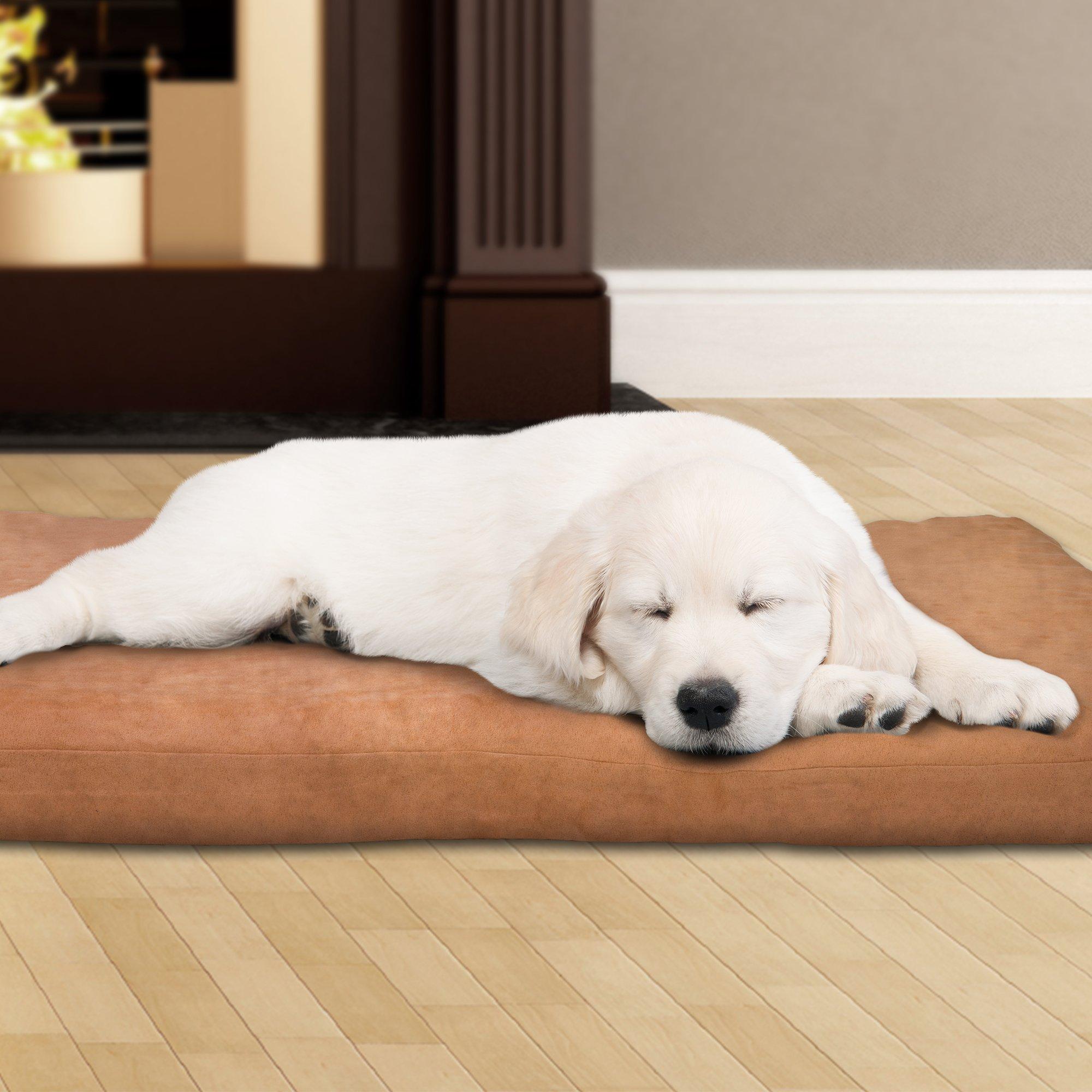 PETMAKER 80-PET4004 3'' Foam Pet Bed 35 x 44, Tan by PETMAKER
