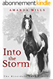 Into the Storm (The Riverdale Pony Stories Book 3) (English Edition)