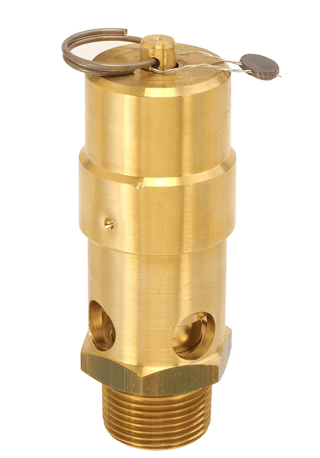 Control Devices SW10-0A060 SW Series Brass Soft Seat ASME Safety Valve, 60 psi Set Pressure, 1 Male NPT