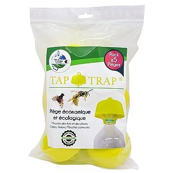 Terra Nostra – Trampa para avispas Trampa frelons trampa mosca fruta trampa moscas los olivos ECONOMIQUE incluye las recetas de cebos Tap Trap X5