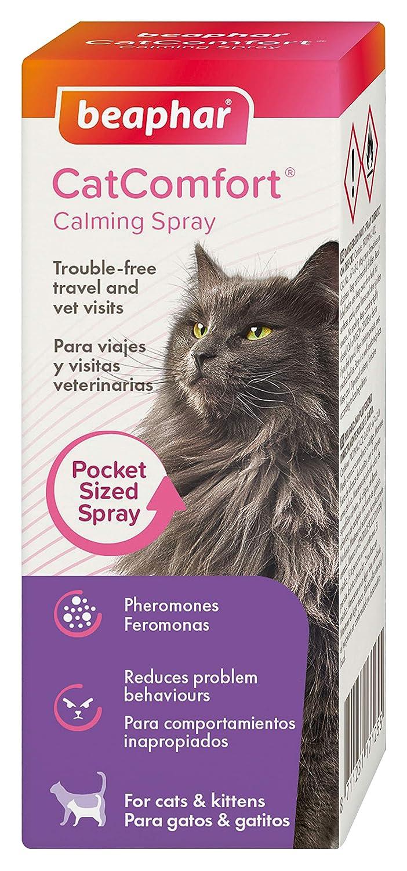 Beaphar Catcomfort Spray para Gatos, 30 ML: Amazon.es: Productos para mascotas