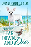 Tear Down and Die: Book #1 in the Cara Mia Delgatto Mystery Series (English Edition)