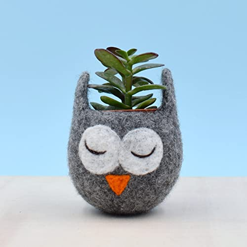Succulent planter Owl planter cactus pot Owl vase mini planter Owl lover gift gift for her